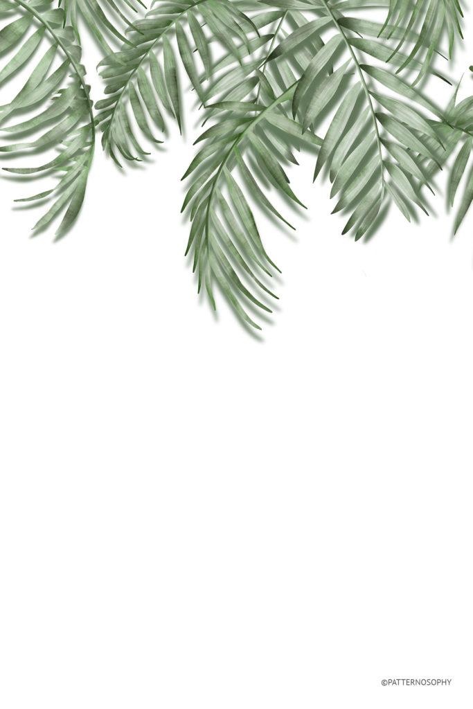 fototapeta tropikalna, fototapeta w liście palmy