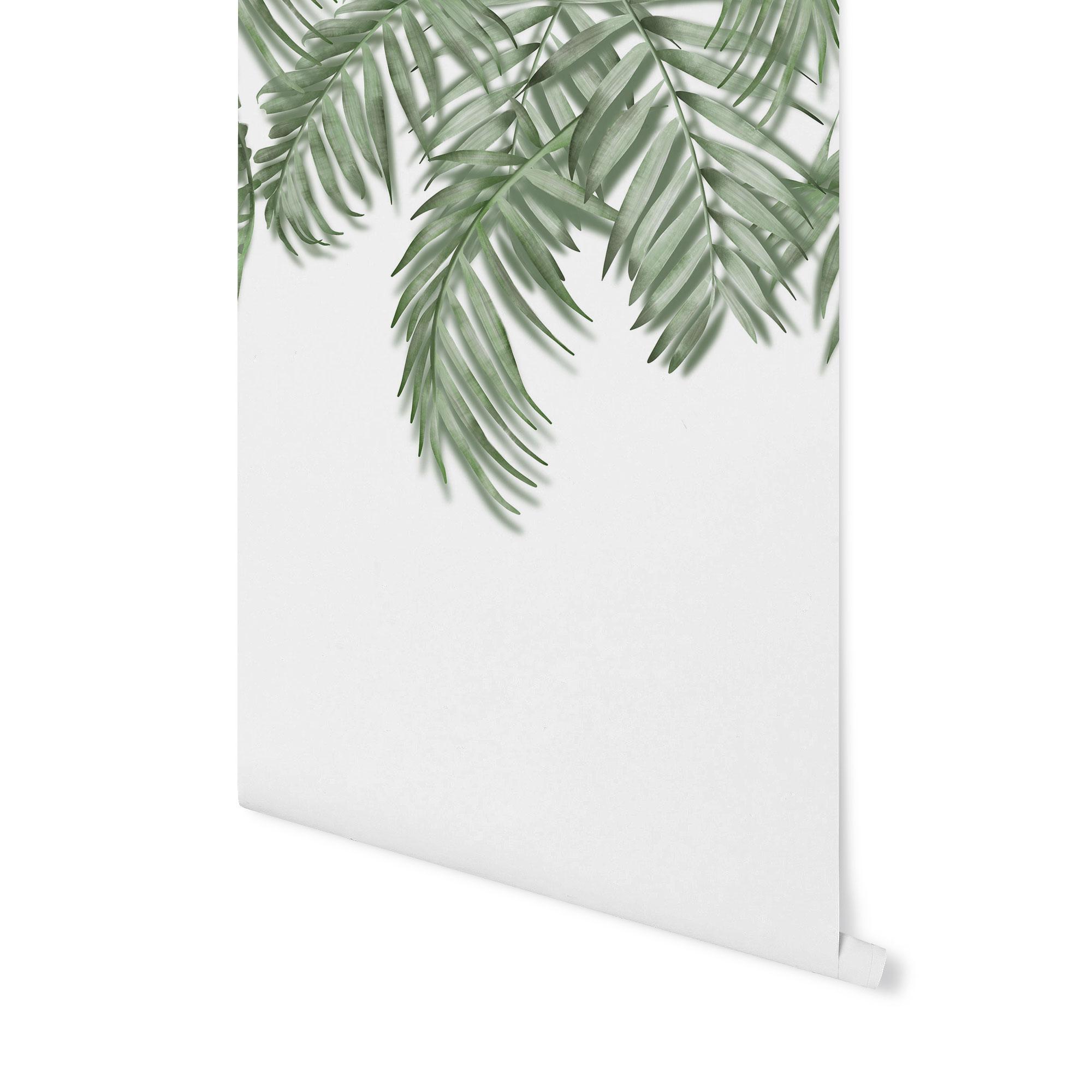 fototapeta w palmy, tropikalna fototapeta