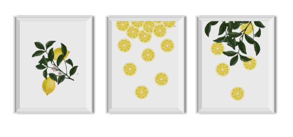 Plakaty do pobrania,plakaty, tryptyk, cytryny