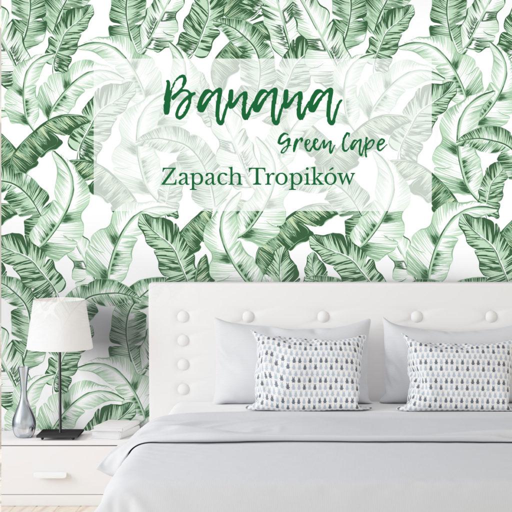 tapeta w liście, tapeta w bananowca, tapeta w liście bananowca, tapeta tropikalna