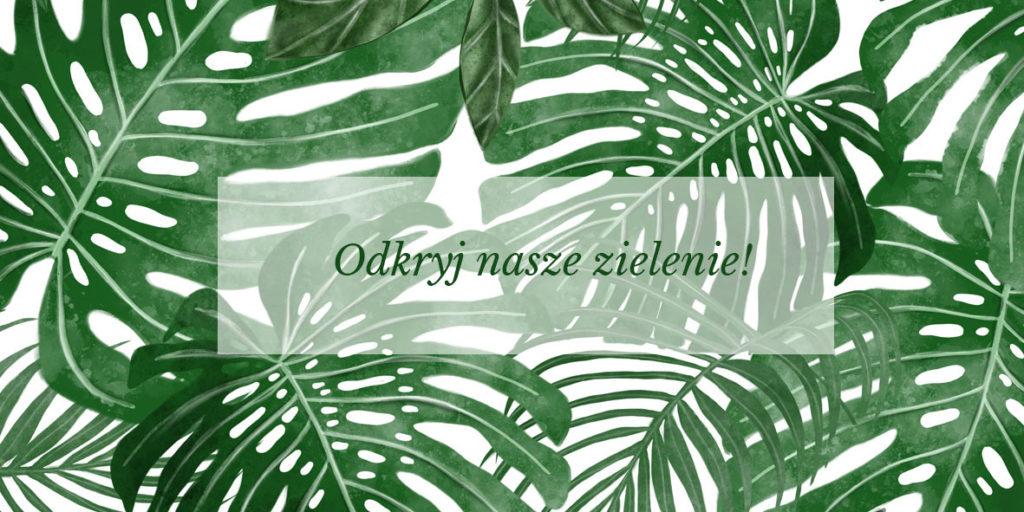 tapeta w liście, tapeta tropikalna